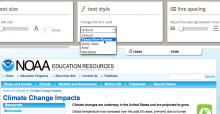 User Interface Options component displayed at the top of a web page